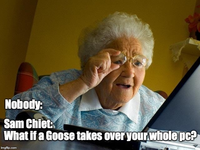 Desktop Goose App for Windows PCs